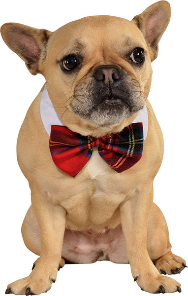 Christmas Pet / Dog Plaid Bow Tie