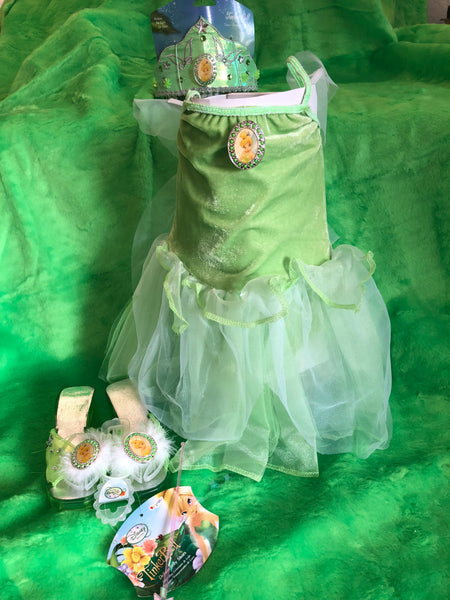 Tinkerbell Party for 6 w/ costume for the birthday girl included (size 4-6x)