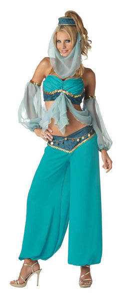 Harem's Jewel Adult Costume