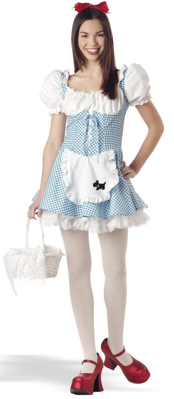 Teen Storybook Dorothy Costume  sc 1 st  Costume City : dorothy adult costume  - Germanpascual.Com