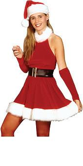 Adult Santa's Inspiration Costume