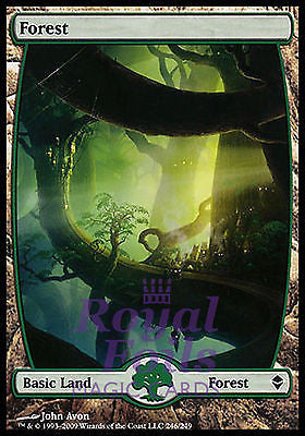 **1x FOIL Forest 246** ZEN MTG Zendikar Basic Land MINT green
