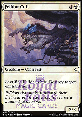 **4x FOIL Felidar Cub** BFZ MTG Battle for Zendikar Common NM white