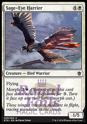 **4x FOIL Sage-Eye Harrier* MTG KTK Khans of Tarkir Common MINT white
