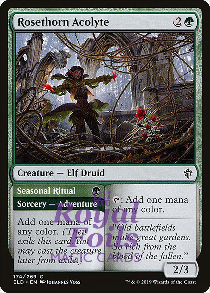 **3x FOIL Rosethorn Acolyte** ELD MTG Throne of Eldraine Common MINT green