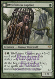 **1x FOIL Wolfbitten Captive // Krallenhorde Killer** DKA MTG Dark Ascension Rare MINT green