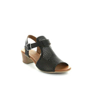 Lyra | Black | LE SANSA | Heels Womens Shoes Online