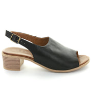 Posie | Black | LE SANSA | LE HEELS Womens Shoes Online