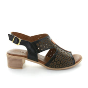 Leena | Black | LE SANSA | LE HEELS Womens Shoes Online