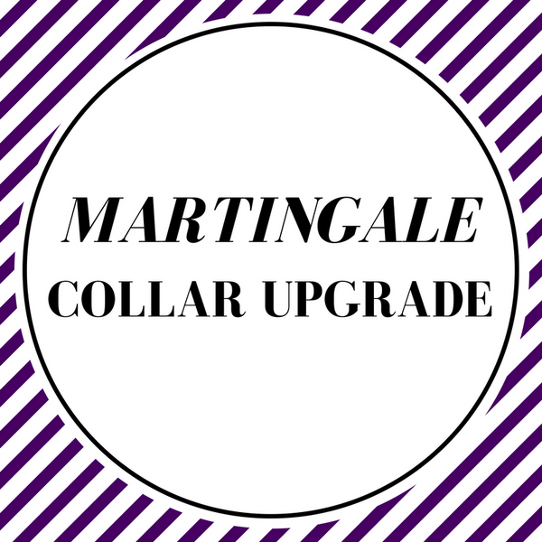Martingale Collar Upgrade - Charlotte's Pet