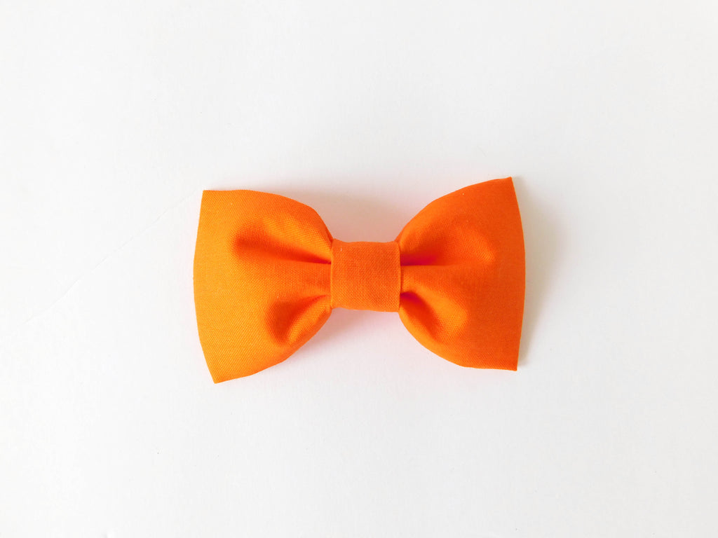 Orange Bow Tie/Flower - Charlotte's Pet