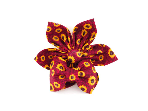 Burgundy Sunflower Collar Flower/Bow Tie - Charlotte's Pet