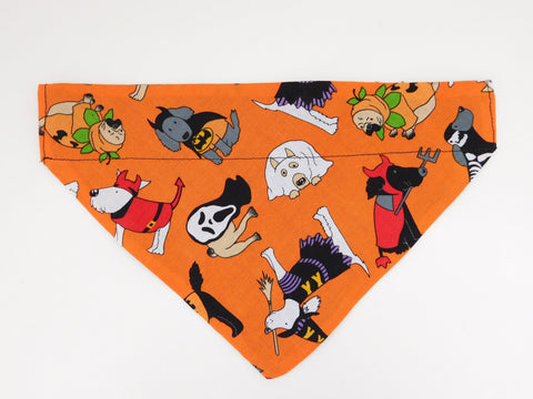 Orange Halloween Dog Bandana - Charlotte's Pet