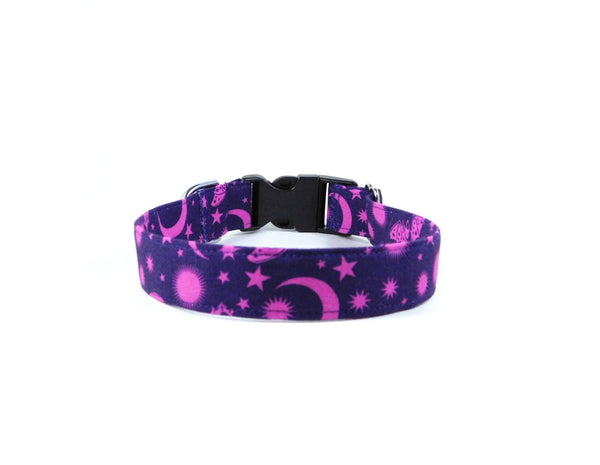 Purple Batty Dog Collar/ Cat Collar - Charlotte's Pet