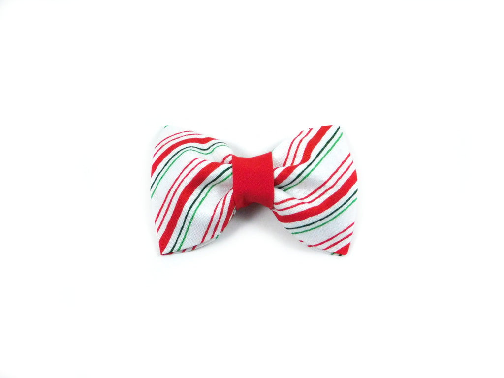 Holiday Stripes Bow Tie/ Collar Flower - Charlotte's Pet