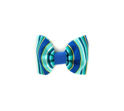 Blue Summer Stripes Collar Flower/Bow Tie