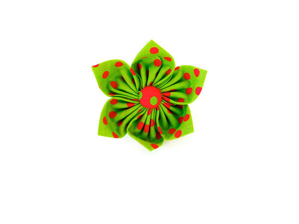 Green and Red Polka Dot Collar Flower/ Bow Tie - Charlotte's Pet