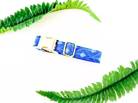Blue and Gold Peacock Collar - Charlotte's Pet