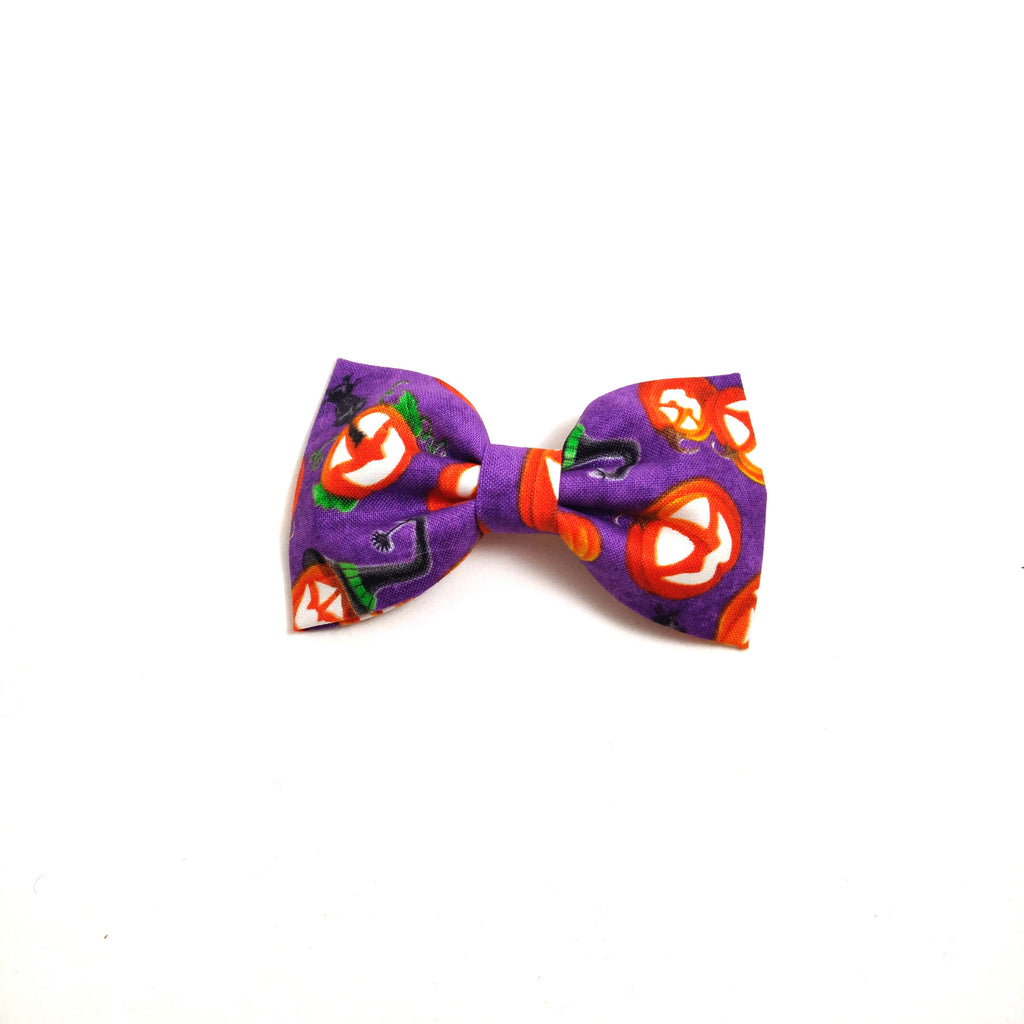 Pumpkin Glow on Purple Collar Flower/Bow Tie