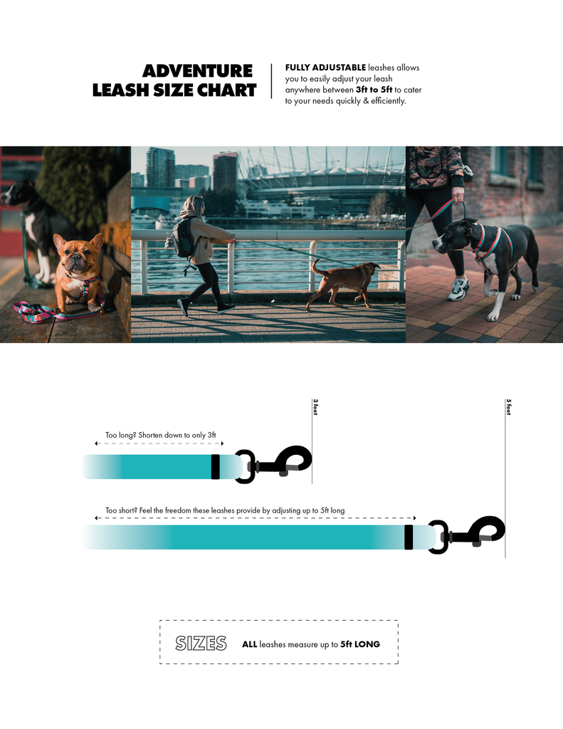 Dog Leash Size Chart