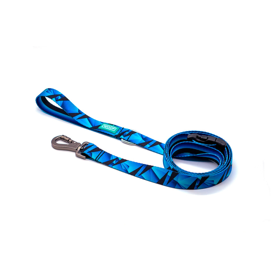 APEX 2 | Dog Leash
