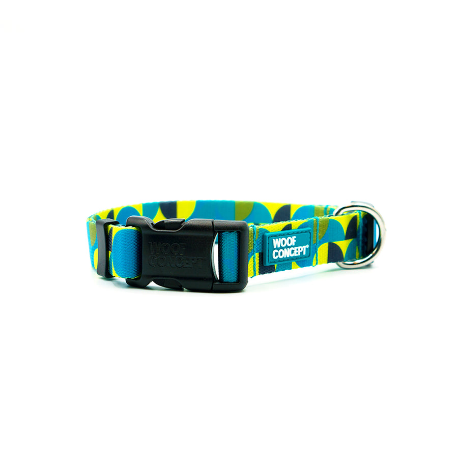 Nomadic x BC SPCA | Dog Collar