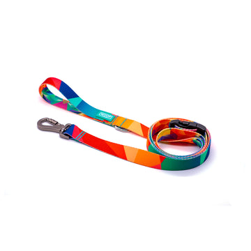 POLYGON 2 | Dog Leash