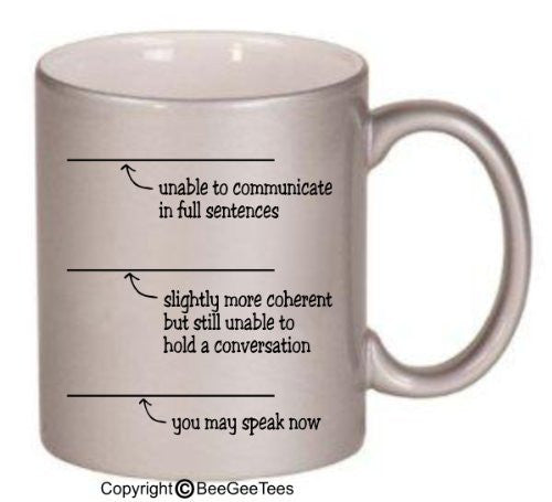 You May Speak Now Coffee or Tea Mug 11 or 15 oz Funny Ceramic Cup in White, Metallic Gold, Pink or Silver by BeeGeeTees #05982