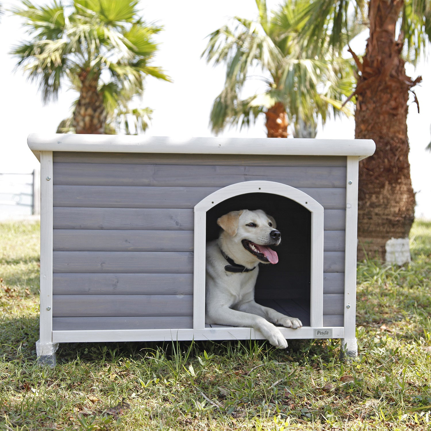 Petsfit Dog House Dog House Outdoor