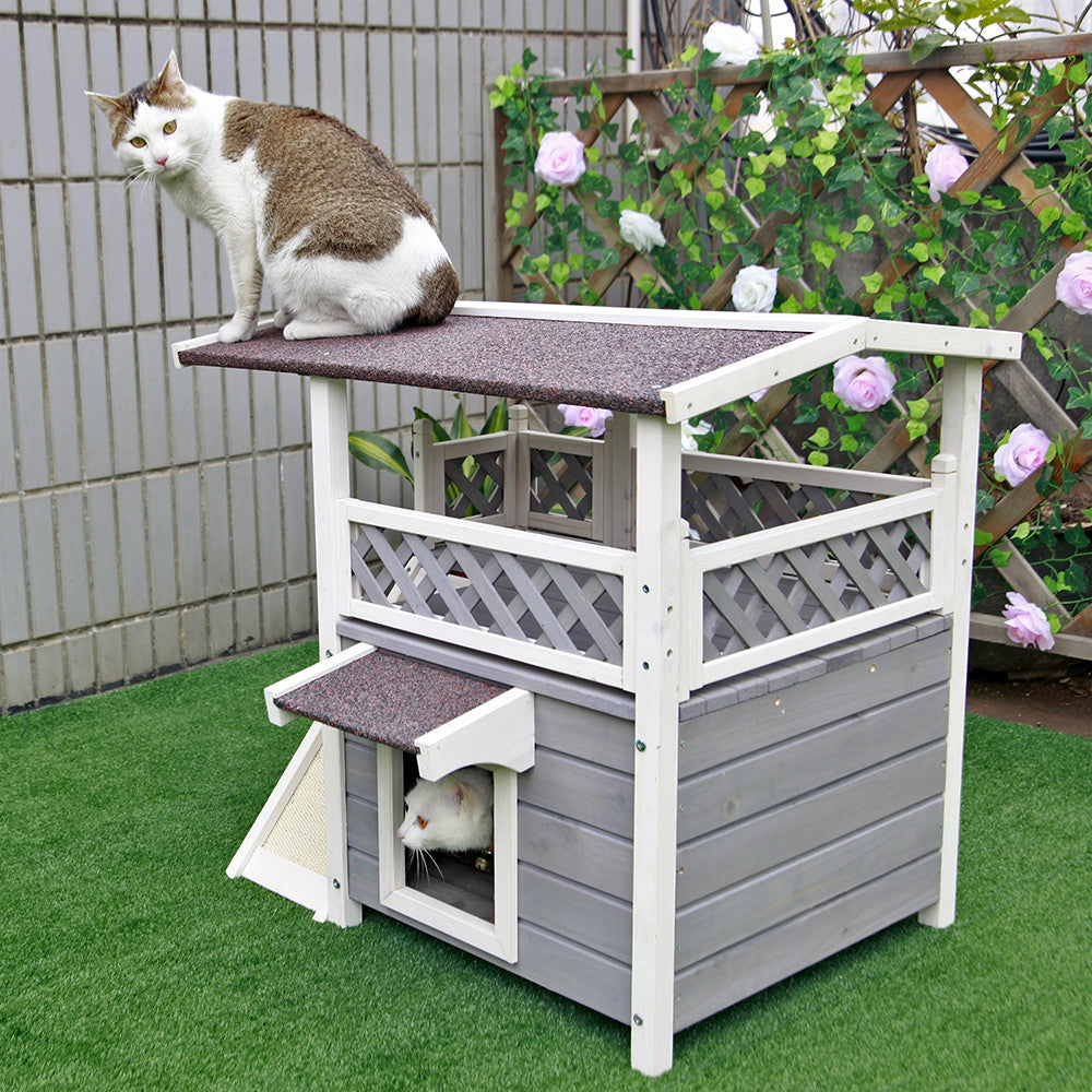Pictures Of Heated Dog Houses
