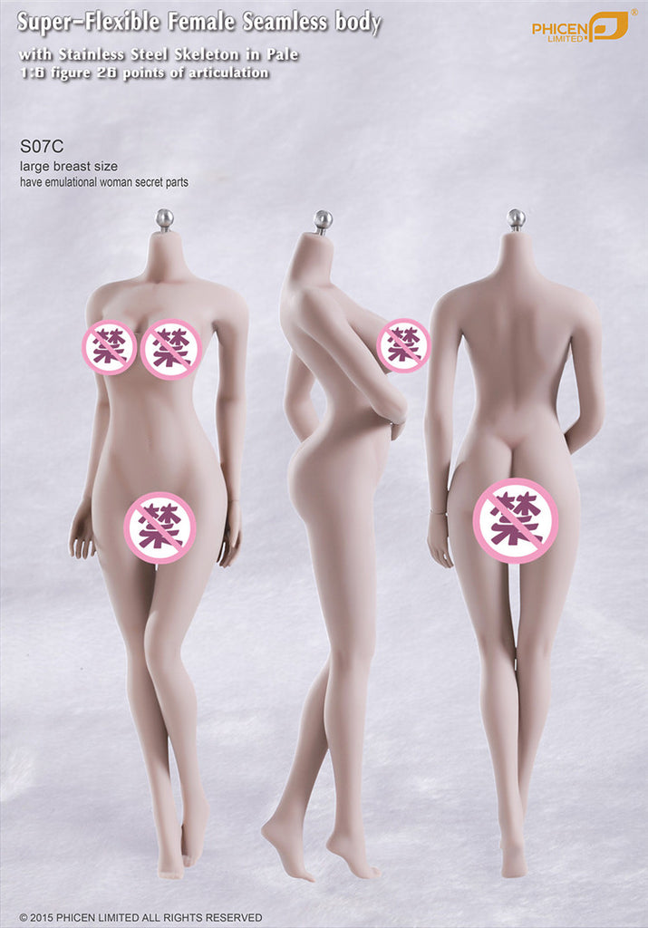 1//6 Steel Skeleton Seamless Female Body Flexible Big Chest Figure Ordinary Skin