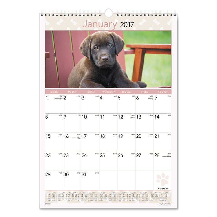 Puppies Monthly Wall Calendar, 12 X 17, 2017