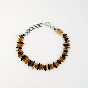 Small Dog Multi Amber Collar