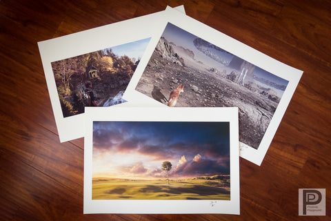 "Bundle 3-Pack of d'Artiste series 13x19"" giclee prints"