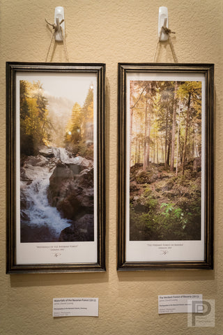 "Framed Art - 7x16"" Waterfalls of the Bavarian Forest and The Verdant Forest of Bavaria"