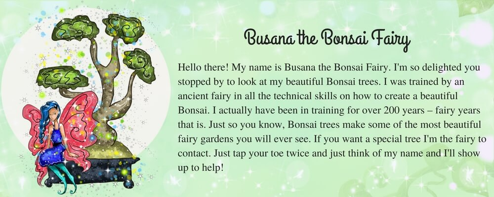 Busana-the-Bonsai-Fairy