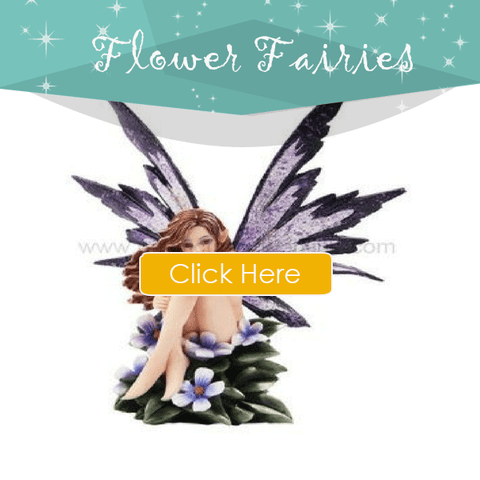 Flower-Fairies