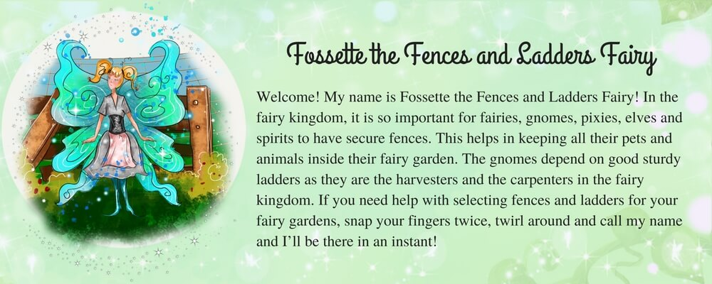 Fossette-the-Fences-and-Ladders-Fairy