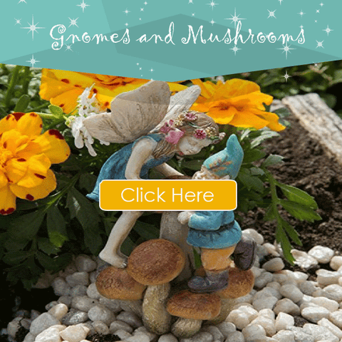 Gnomes-and-Mushrooms