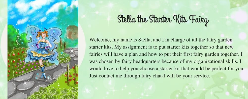 Stella-the-Starter-Kits-Fairy