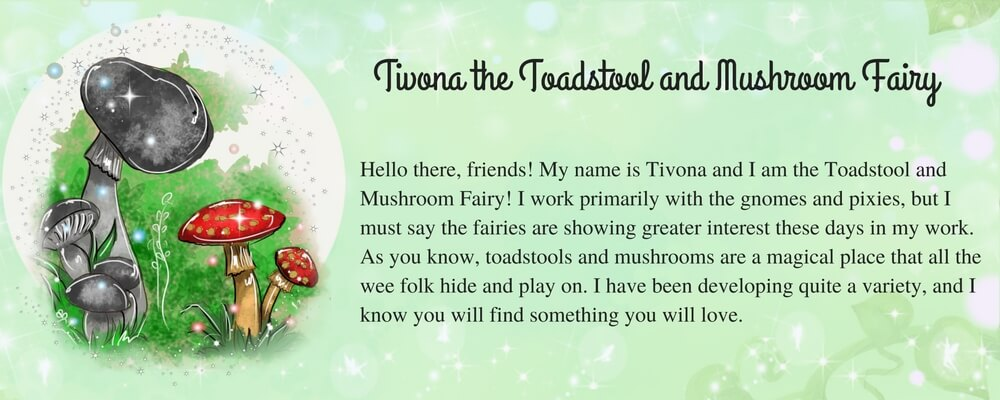 Tivona-the-Toadstool-and-Mushroom-Fairy