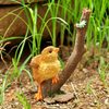 Baby Chick with Worm - Teelies Fairy Garden Store