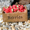 Berries Box - Teelies Fairy Garden Store