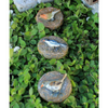 Bird Stepping Stones | Teelie's Fairy Garden Store