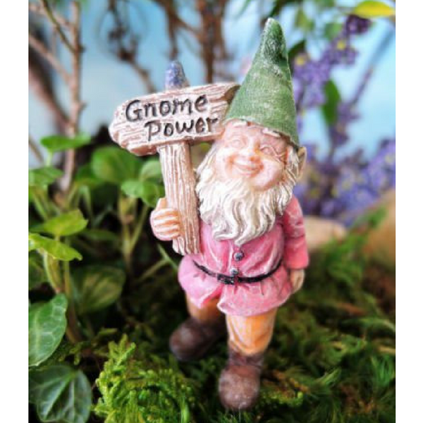 Buddy, The Gnome - Teelies Fairy Garden Store