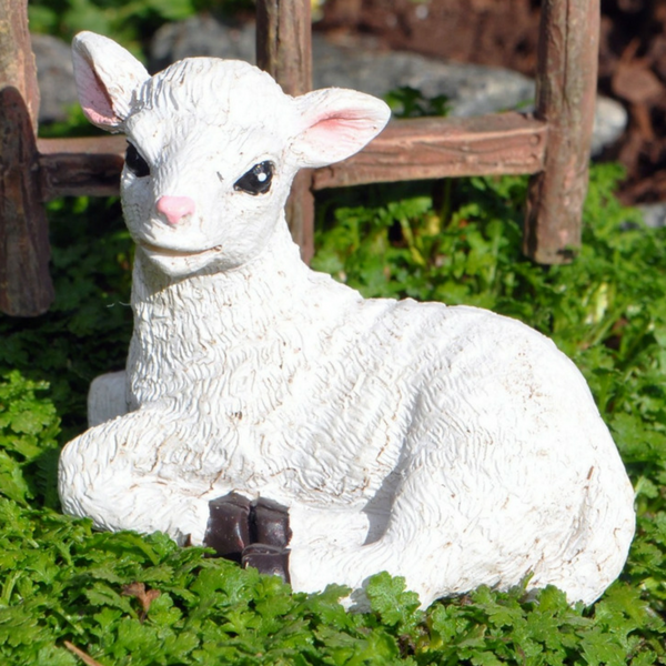 Farm Sheep - Teelies Fairy Garden Store