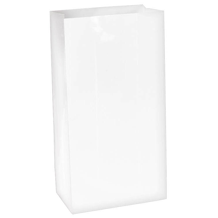 Frosty White Mini Paper Bags (12ct)