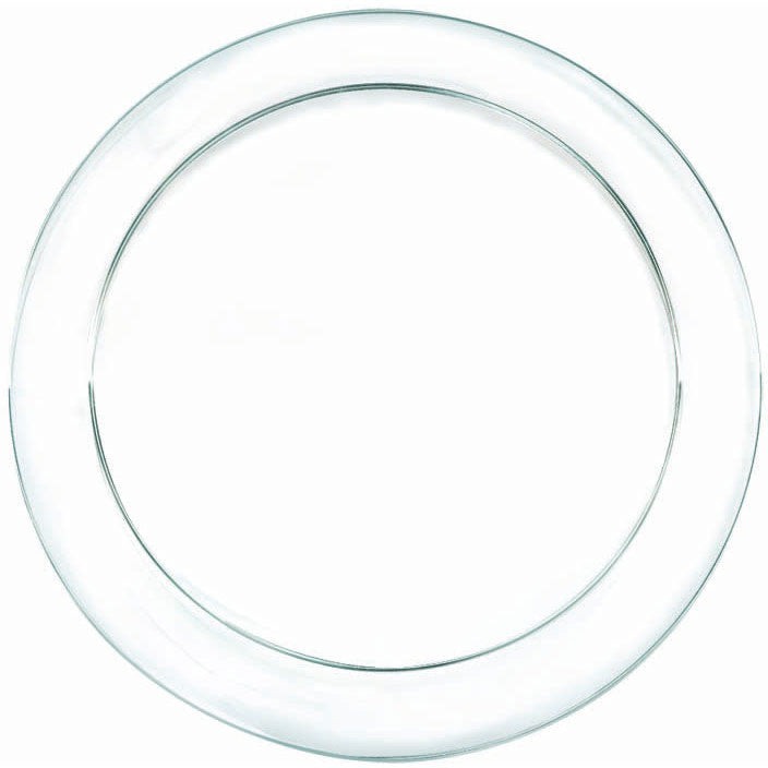 Clear Plastic Dinner Plates (24ct)