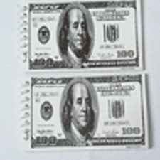$100 Bill Note Pads
