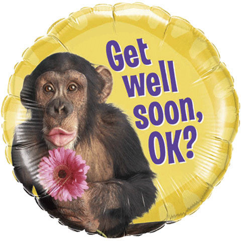 "18"" Get Well Chimp With Flower"